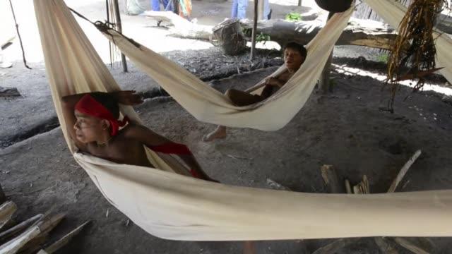 vídeos y material grabado en eventos de stock de the venezuelan government organized a media tour of irotatheri southern venezuela where indigenous organizations have denounced a massacre of 80 of... - yanomami