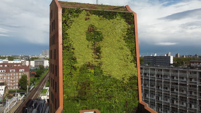 the vibrant green living wall on the side of digby road 100% affordable housing development, london, homerton, hackney, from a high angle view. - design element stock videos & royalty-free footage