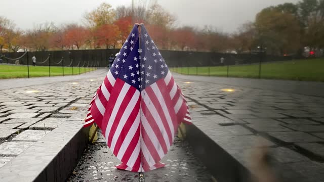 the vietnam veterans memorial wall on veterans day on november 11, 2020 in washington, dc. veterans day is when americans honor those who served the... - veterans day stock videos & royalty-free footage