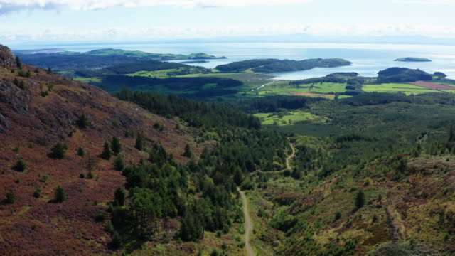 the view from a drone as it is flown along the side of a scottish hill in early morning summer sunlight - johnfscott stock videos & royalty-free footage