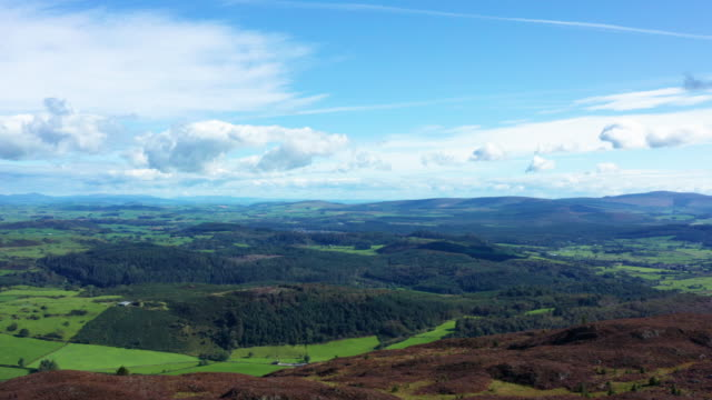 the view from a drone of scottish countryside as it is flown over the top of a hill in early morning summer sunlight - johnfscott stock videos & royalty-free footage