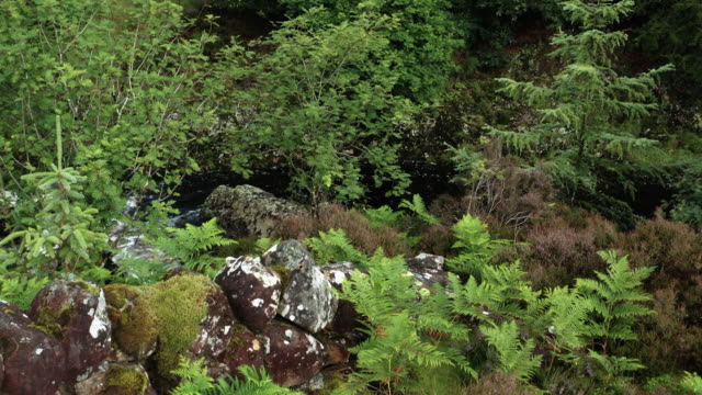 the view from a drone of water flowing in a small scottish river in rural dumfries and galloway, south west scotland - johnfscott stock videos & royalty-free footage