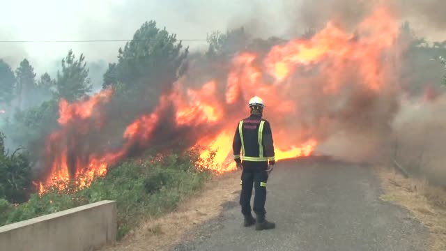 the violent forest fires that started on sunday in portugal became more intense tuesday evening forcing rescue workers to evacuate around 10 villages... - portugal stock videos & royalty-free footage