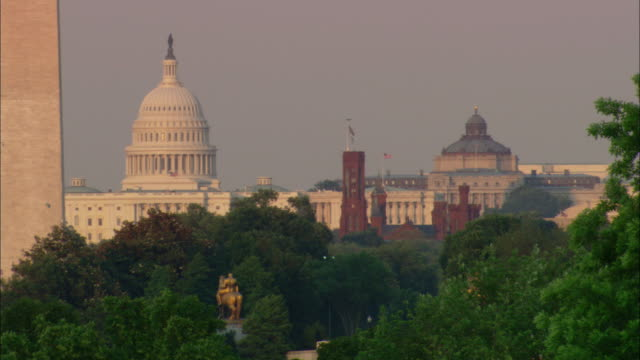The Washington Monument, Capitol Building, and Smithsonian Museum appear over treetops in the Washington Mall.