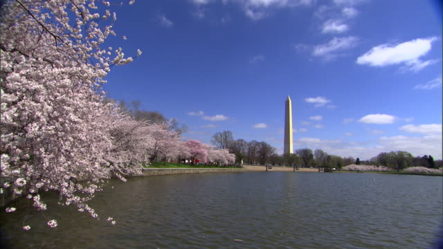 the washington monument rises above the potomac river. - washington monument washington dc stock videos & royalty-free footage