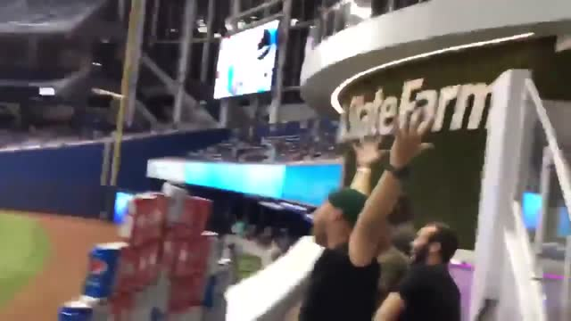 the washington nationals beat the miami marlins 6-4 at marlins park on friday, september 20, but some local fans remained cheerful, thanks to home... - nationals park stock videos & royalty-free footage