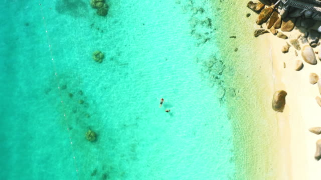 the water is always perfect out here - bay of water stock videos & royalty-free footage