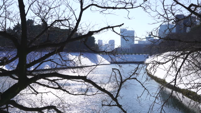 The next morning of winter snowstorm at Chiyoda-ku Tokyo Japan – January. 23 2018. The National Diet of Japan Building and Nagatacho district high-rise buildings stand behind the snowy Imperial Palace Moat, which are reflecting to the water surface of the