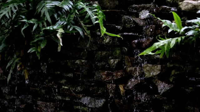 vídeos de stock, filmes e b-roll de a cachoeira no muro no jardim. - característica de construção