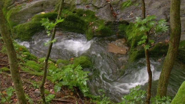 vídeos de stock, filmes e b-roll de the waterfall in geomnyongso pond(tourist attractions), taebaek-si, gangwon-do province - ponto de referência natural