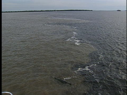 stockvideo's en b-roll-footage met the waters from the rio negro and the amazon converge, forming different colors. - color negro