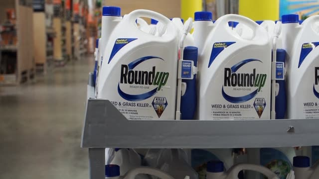 the weedkiller roundup contributed to a us man's cancer a california jury found tuesday delivering the second major legal defeat to agrochemical... - herbicide stock videos & royalty-free footage
