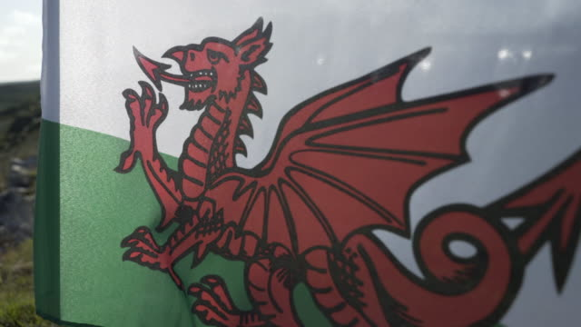 the welsh dragon flag blowing in the wind. - animal representation stock videos & royalty-free footage