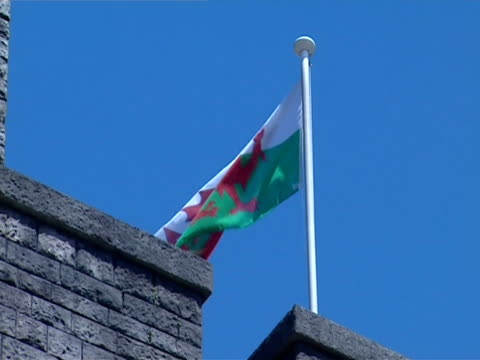 the welsh flag flies above cardiff castle. - cardiff wales stock videos & royalty-free footage