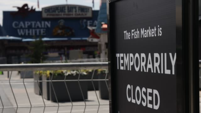 the wharf fish market is shut down by d.c. officials after pictures showed a packed market over the weekend when owners did not enforce social... - maryland stato video stock e b–roll