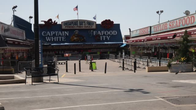 vídeos y material grabado en eventos de stock de the wharf fish market is shut down by d.c. officials after pictures showed a packed market over the weekend when owners did not enforce social... - virginia estado de los eeuu