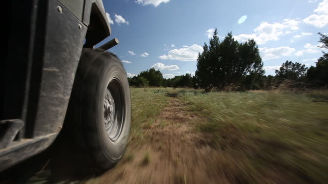 The wheel of Polaris Ranger driving down a ranch road.