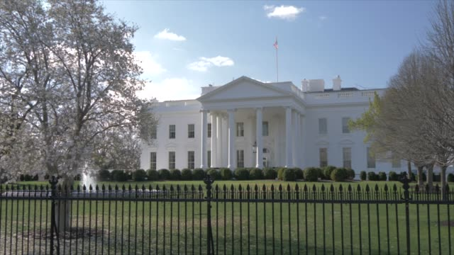the white house and cherry blossom, washington dc, united states of america, north america - white house washington dc stock videos & royalty-free footage
