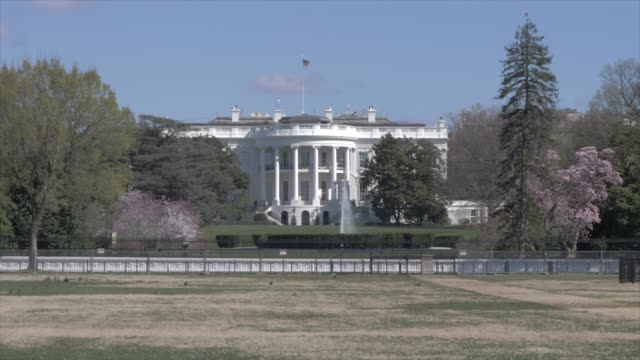 the white house from the ellipse, washington dc, united states of america, north america - ワシントンdc ホワイトハウス点の映像素材/bロール