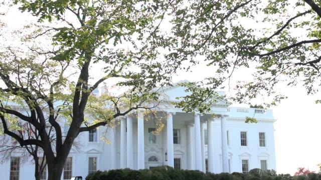 the white house in washington d.c. - white house washington dc stock videos & royalty-free footage