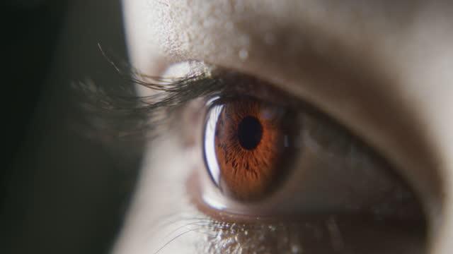 stockvideo's en b-roll-footage met hoe breder je ogen, hoe helderder je toekomst - bruine ogen