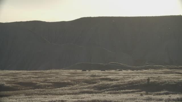 the wind blows dust across a grassy, mountainous, high desert landscape in western colorado - altopiano video stock e b–roll