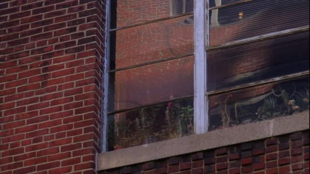vídeos y material grabado en eventos de stock de the window of a brick building reflects passing smoke. - ladrillo