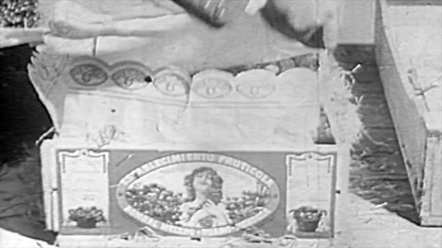 the winemaking process in the 1920's - farmer's market stock videos and b-roll footage