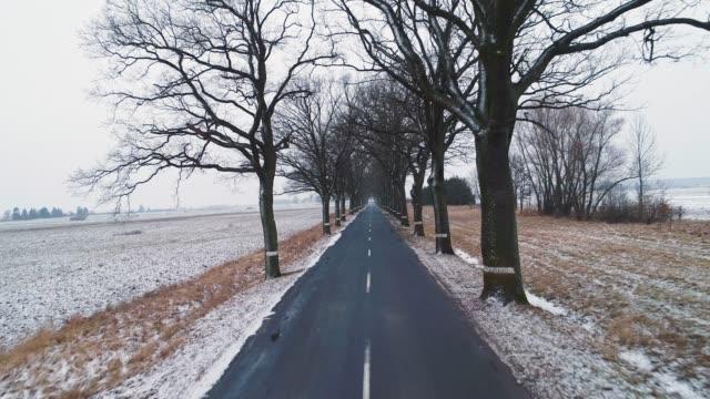 stockvideo's en b-roll-footage met de winter omhuld weg - volgen activiteit