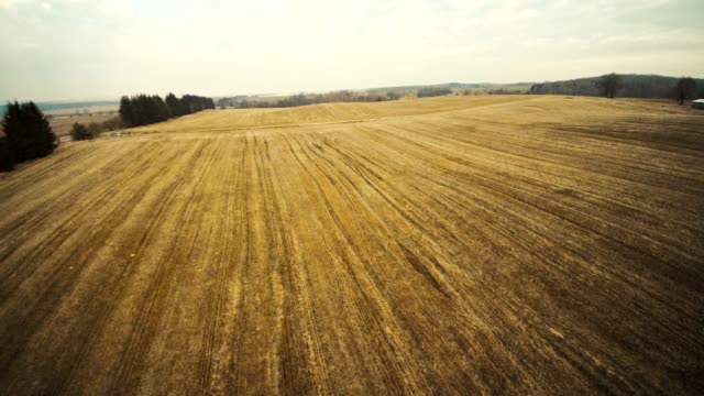 the winter's rural landscape. empty fields in the belarussian country. aerial view. - inquadratura dall'ascensore video stock e b–roll