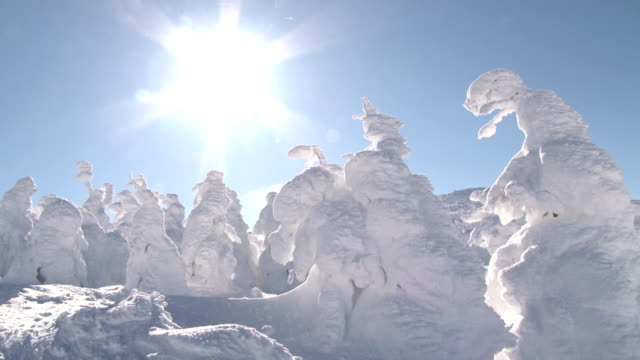 the wintry scene of frost-covered trees, created by snow and ice that stick to the branches of aomori-todomatsu fir trees in zao hot springs ski... - majestic stock videos & royalty-free footage