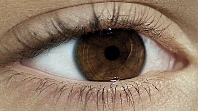 der women's eye. close-up - braune augen stock-videos und b-roll-filmmaterial