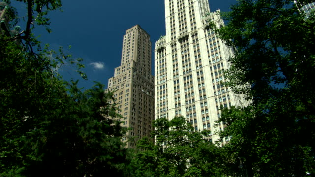 the woolworth building towers over leafy trees. - woolworth building stock videos & royalty-free footage