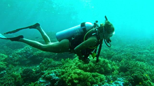 stockvideo's en b-roll-footage met de wereld ziet er beter uit onder water - scubaduiken