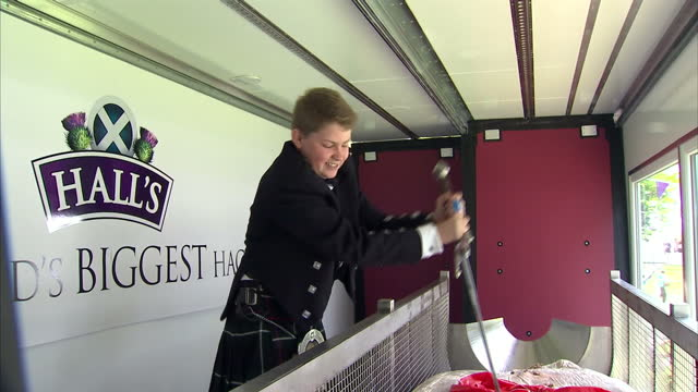the world's biggest haggis has been on display at a highlands festival on june 19 2014 in edinburgh scotland - biggest stock videos & royalty-free footage