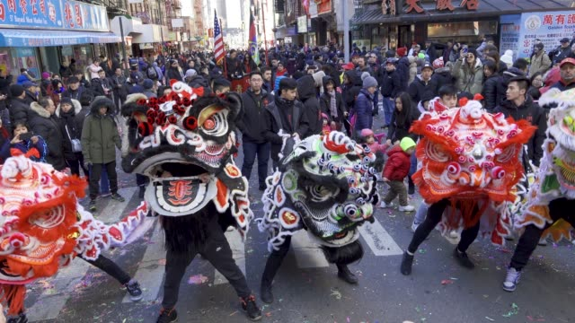 the year of the pig lunar new year lion dance in chinatown manhattan new york city usa - chinatown stock videos & royalty-free footage