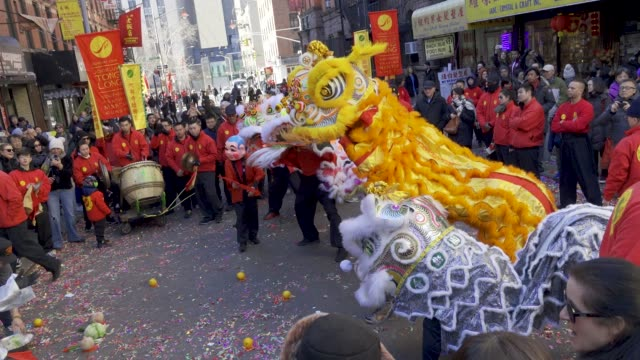 the year of the pig lunar new year lion dance in chinatown manhattan new york city usa - chinese new year stock videos & royalty-free footage