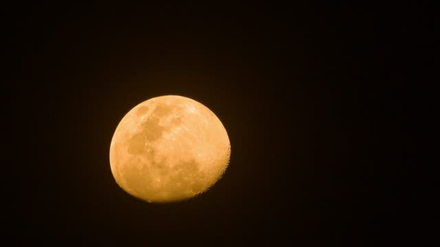 4k :the yellow moon. - supermoon stock videos & royalty-free footage