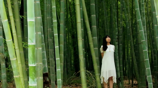The young woman in the bamboo forest
