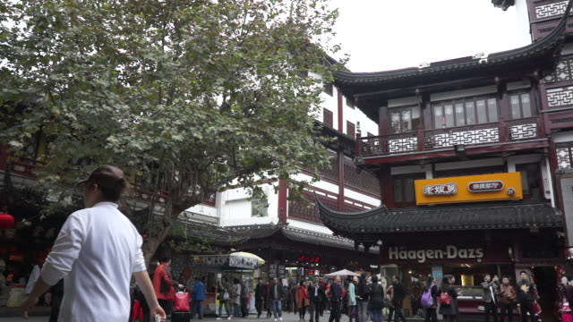the yu garden, is a famous typical chinese garden located in old city center of shanghai. - classical chinese garden stock videos & royalty-free footage