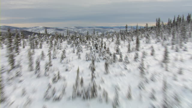 The Yukon river snakes through a snowy mountain valley overlooking the coast in Yukon, Canada.