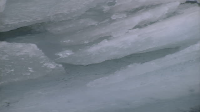 the yukon's tagish lake thaws with water running under chunks of ice. - whitehorse stock videos and b-roll footage