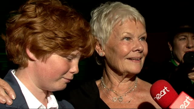 'shrek the musical' premiere: arrivals and interviews; dame judi dench post-show interview sot - ジュディ・デンチ点の映像素材/bロール