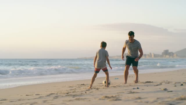 vídeos de stock e filmes b-roll de their favorite place to play is the beach - papa