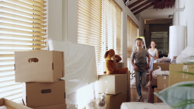 their new house has so much more space to have fun - chasing stock videos & royalty-free footage