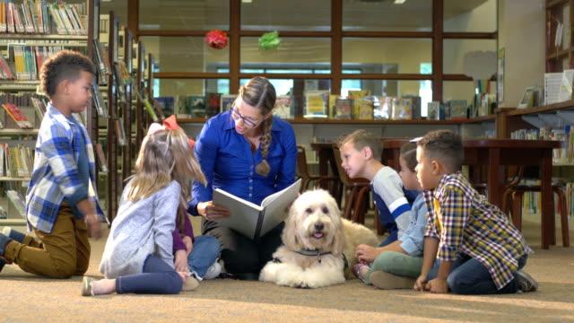 セラピー犬、ダウン症候群の女の子、図書館の友人 - 公共図書館点の映像素材/bロール