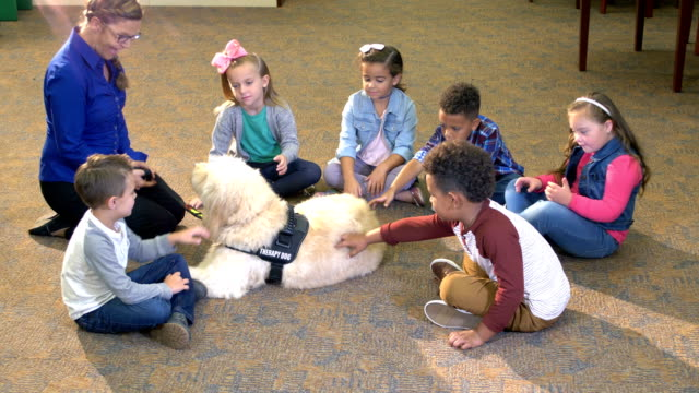 therapy dog, down syndrome girl, friends in library - hair band stock videos & royalty-free footage