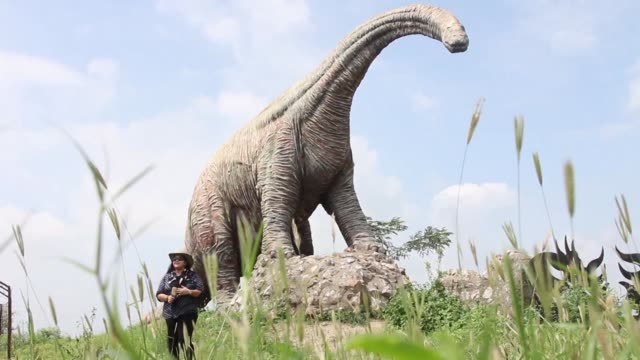 there are many dinosaur fossils littering a dusty estate in western india and now a member of one of indias royal families dubbed the dinosaur... - jurassic stock videos & royalty-free footage