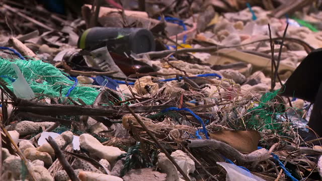 there has been a warning that the amount of plastic on beaches around the world could be underestimated by up to 80 percent those are the findings of... - warning sign stock videos & royalty-free footage