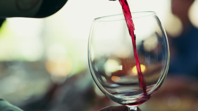 there's always time for wine - wine glass stock videos & royalty-free footage